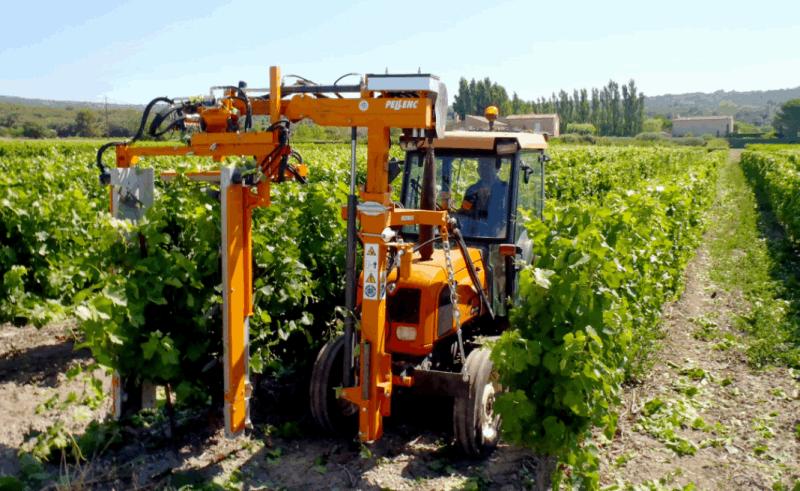 農業機器人超威,1台抵30工人!摘草莓採葡萄一把罩 - 新聞